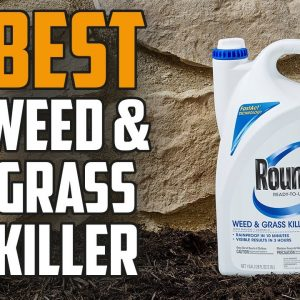 ✅ Weed Killer: Best Weed Killer 2021 (Buying Guide)