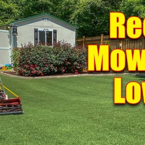 Gas Reel Mowers - Reel Mowing Low Grass