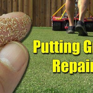 Home Putting Green Seeding Repairs Reel Mowing