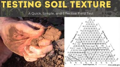 How to Determine Soil Type by Hand - The Ribbon Test