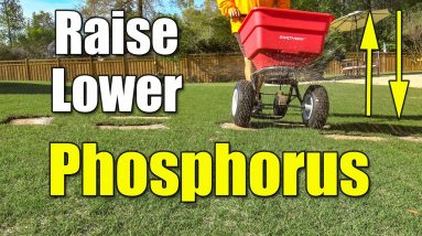 How to Lower or Raise Lawn Phosphorus