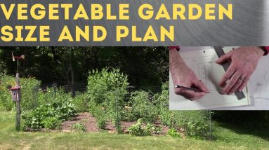 How to Size and Plan a Vegetable Garden