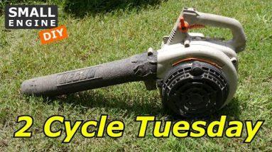 2 Cycle Tuesday, Echo Leaf Blower