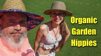 How to Make Organic Garden Fertilizer and Mulch