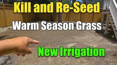 Reseeding Warm Season Lawn - New irrigation System