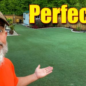 The Perfect Bermuda Lawn