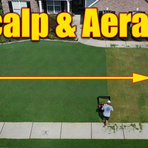 Bermuda Lawn Scalp and Aerate - Summer Thinning