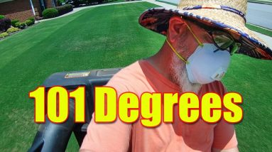 Cutting Lawns in Hot Weather