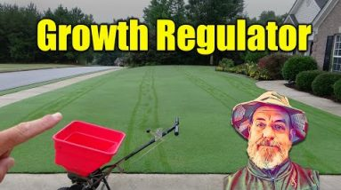 Growth Regulator for Lawns - FAST Application