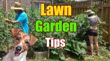 Lawn Care and Garden Tips - Full Day of Yard Work