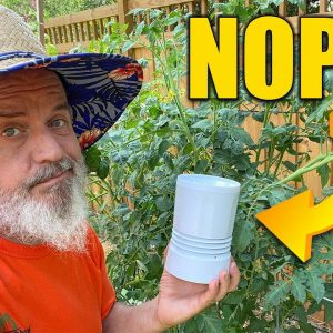 Wireless Rain Gauge - Testing and Review