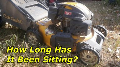 Cub Cadet Mower - How Much Is it Worth It?