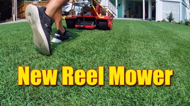 Fall Lawn Cutting Height and Fertilizers