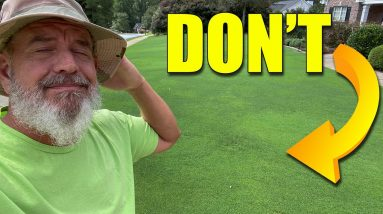 Fall Lawn Preemergent How and When to Apply