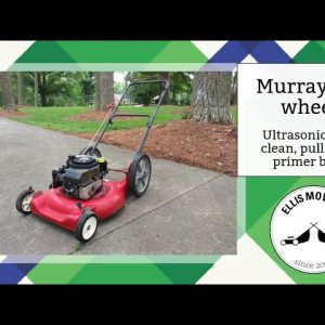 Ultrasonic cleaner success on a Murray push mower carb plus pull rope and primer bulb replacement