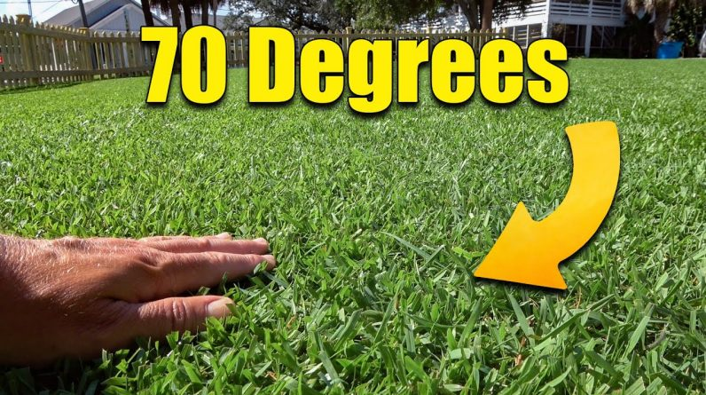 Fall Bermuda Cooling Temps - Now What?