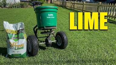 Lawn Lime Who Should Apply Lime on Their Lawn